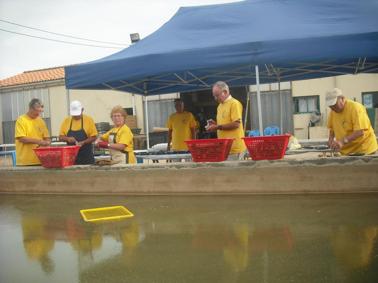 La Guittière: Ouverture des huîtres